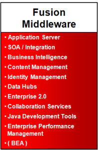Oracle Fusion Middleware solutions usa